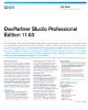 Devpartner Studio Professional Edition