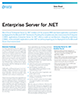 Enterprise Server for .NET