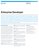 Enterprise Developer