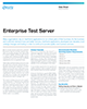 Enterprise Test Server