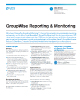 GroupWise Reporting & Monitoring