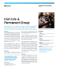 Irish Life and Permanent Group Success Story