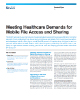 Meeting Healthcare Demands for Mobile File Access and Sharing Product Flyer