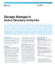 Storage Manager In Active Directory Networks