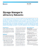 Storage Manager In eDirectory Networks
