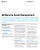ZENworks Asset Management Product Flyer