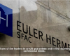 Customer Success Story: Euler Hermes & PlateSpin Protect