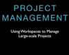 Managing Large Projects with Novell Vibe