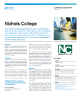Nichols College Success Story
