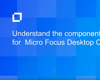 Video 3: Understand the Components of Turbo for Micro Focus Desktop Containers